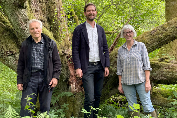 Sixty-five acres of ancient woodland secured as community woodland thanks to wind farm grant