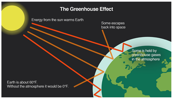 The naturally occurring greenhouse effect. Greenhouse gases in our atmosphere trap radiation from the sun, heating the surface of the planet and the atmosphere. Source: https://medialibrary.climatecentral.org/resources/the-greenhouse-effect